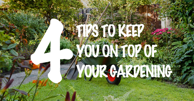 4 tips to keep you on top of your Gardening